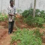 Atelier de jardinage